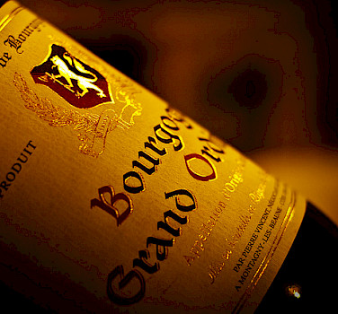 Bourgogne wine - photo by Andreas Kusumahadi