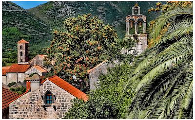 Wine growing peninsula of Peljesac, Dalmatia, Croatia. Flickr:Mario Fajt