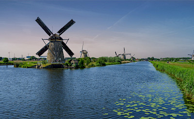 Biking past the windmills at Kinderdijk in the Netherlands. Flickr:Norbert Reimer