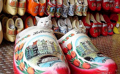 "Wooden Dutch clogs known as ""klompen."" Photo via Wikimedia Commons:Jim Judges"
