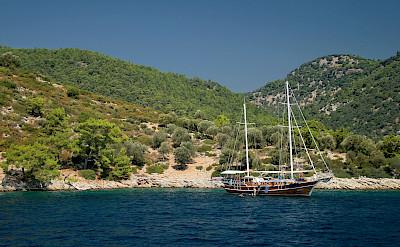 Sarsala in Turkey. Flickr:Jorge Franganillo