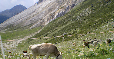 St. Moritz, Switzerland has extraordinary natural beauty. Photo via Flickr:Caccamo