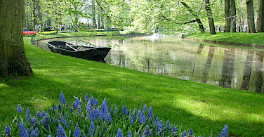 Keukenhof, Lisse, South Holland, the Netherlands. Photo via Flickr:Börkur Sigurbjörnsson