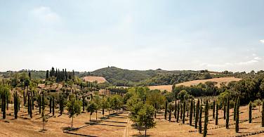 Rolling hills of Asciano in province Siena, region Tuscany, Italy. Photo via Flickr:Bo&Ko