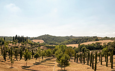 Rolling hills of Asciano in province Siena, region Tuscany, Italy. Flickr:Bo&Ko