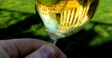 Glass of Italian Chardonnay. Photo via Wikimedia Commons:myhobosoul