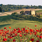 Tour en bicicleta de carretera por Toscana Foto