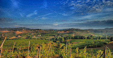 Bike tour through Tuscany's Chianti region. Photo via Flickr:Francesco Sgroi