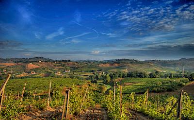 Bike tour through Tuscany's Chianti region. Photo via Flickr:Francesco Sgroi