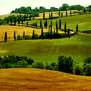 Tuscany - Florence, Siena, and the Chianti Photo