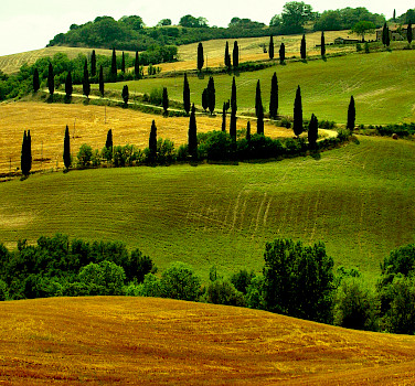 Tuscany's many rolling hills. Photo via Flickr:Giampoalo Macorig
