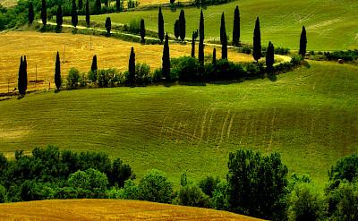 Tuscany's many rolling hills. Photo via Flickr:Giampoalo Macorig