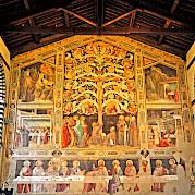 Tuscany - Round Trip Pisa Photo