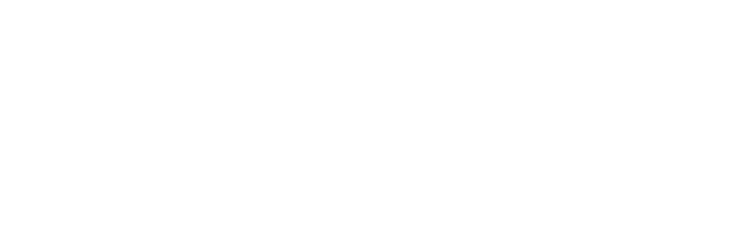 Terms + Conditions