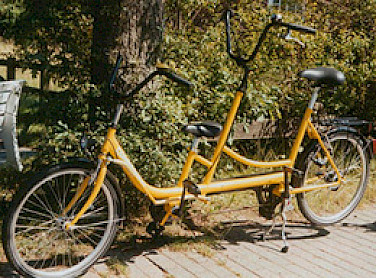 Kid tandem bike