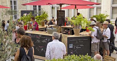 Wine tasting in Avignon, France. Photo via Flickr:Vins Rhône