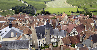 Sancerre vineyards region in France