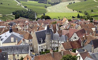 Sancerre vineyards region in France