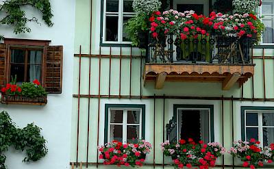 Typical Austrian facades. Hallstatt, Austria. Photo via Flickr:chany crystal