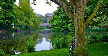Biking near Amsterdam, North Holland, the Netherlands. Photo via Flickr:Moyan Brenn
