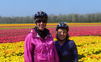 Cycling Holland and the Tulip Fields! Photo courtesy of Jantien Wondergem