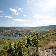 Traben-Trarbach along the Mosel amidst vibrant vineyards in Germany. Photo via Flickr:Mark Strobl