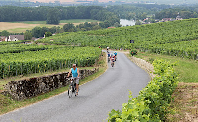 Biking the Champagne, France. ©TO