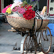 Flower bicycle in Hanoi - photo via Flickr:stefan77dd