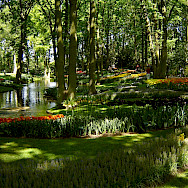 Keukenhof, Lisse, Holland. Photo via Netherlands Board of Tourism