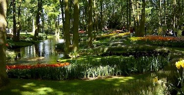 Keukenhof, Lisse, Holland. Photo courtesy of the Netherlands Board of Tourism