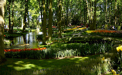 Keukenhof, Lisse, Holland. Photo via Netherlands Board of Tourism