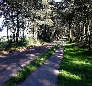A bike path between Lunteren and Barneveld - photo by Jan VandenHengel