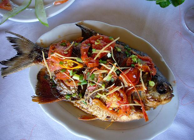 Fresh fish - Vietnamese Junks | Bike & Boat Tours