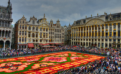 Flower carpet show in Brussels, Belgium. Flickr:wwwglynlowecom