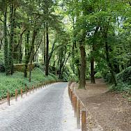 Parque Nacional da Pena in Sintra, Portugal. Flickr:FlyingCrimsonPig