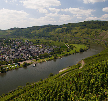 Biking along the Mosel River. Photo via Flickr:Michal Osmenda