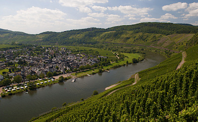 Biking along the Mosel River. Flickr:Michal Osmenda