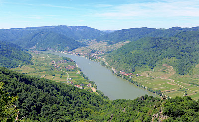 Danube River in Wachau wine-growing region, Austria. CC:bwag
