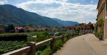 Quiet roads in the Wachau Valley. Photo by Elena.