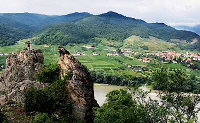 Wachau Valley vineyards along the Danube River, Austria. Photo via Flickr:alchen_x