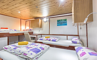 Triple Cabin on the Harmonia (Below Deck) | Bike & Boat Tours