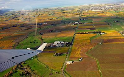 Autumn vineyards in the Marlborough region. Photo via Flickr:PhillipC