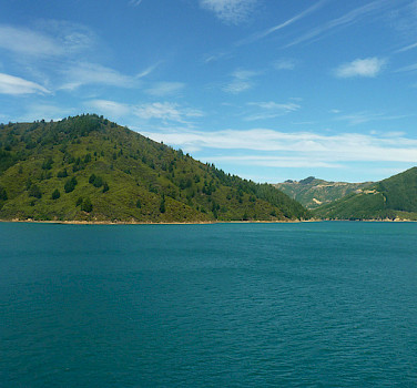 Marlborough Sounds. Photo via Flickr:Mafue