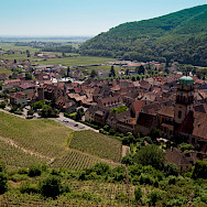 Vine-covered hill around Kaysersberg, Alsace, France. Photo via Flickr:Allan Harris