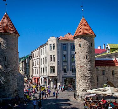 Cycling in the Baltics - Tallinn to Vilnius