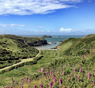 Gorgeous landscapes dot Pembrokeshire. Photo via Flickr:David