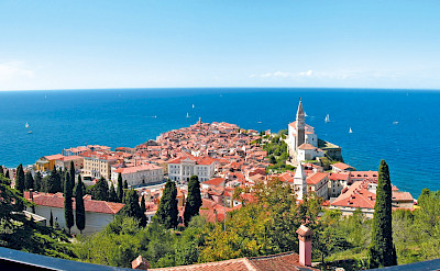 The famous red roofs of Croatia! ©Photo via TO