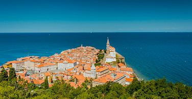 Piran on the Adriatic Sea in Slovenia. Photo via Flickr:Marco Verch