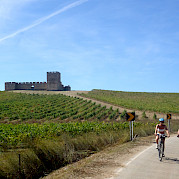 Castles and Wine Photo