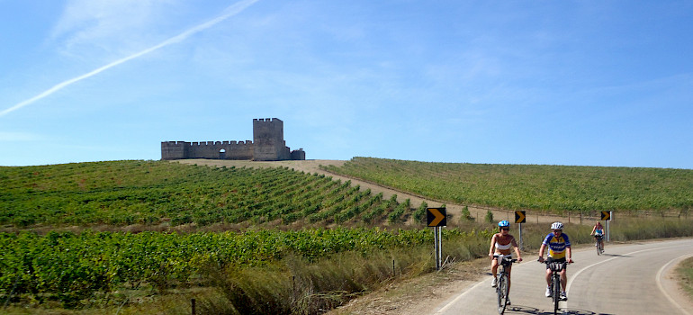 Biking past vineyards, and castles on this tour. Photo courtesy of Tour Operator.